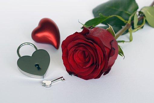 rose-2019689__340